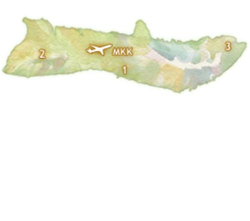 Driving Times Molokai