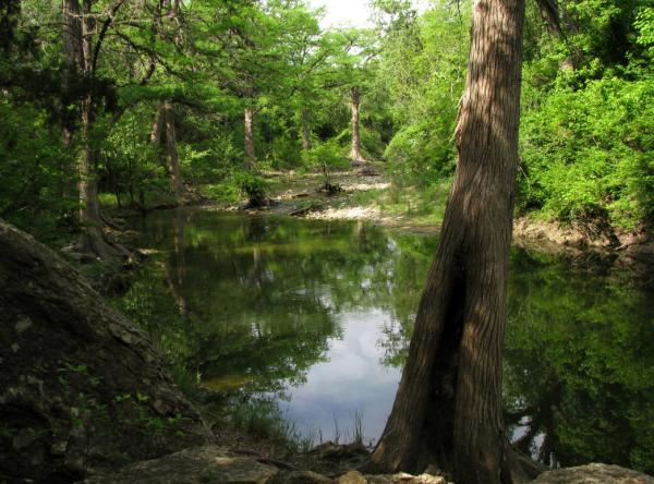 Onion Creek at McKinney Falls State Park