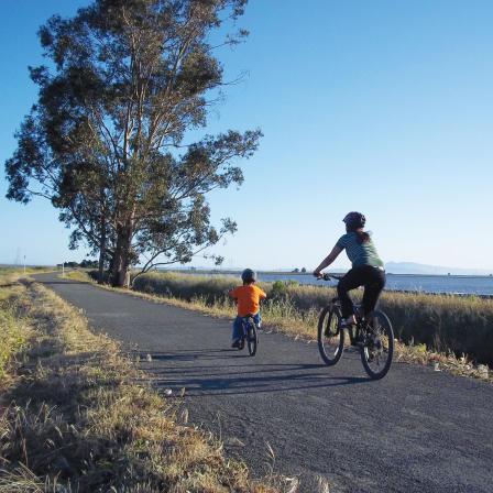 American Canyon Bikes