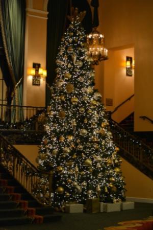 Amway Grand Plaza Christmas Tree holiday lights downtown