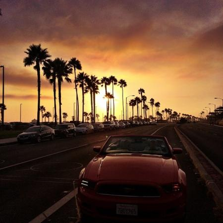 Driving down PCH with the sunset and palm trees in the distance... beautiful! Pull over for a moment and enjoy the sight! (Photo by letenney / Instagram)
