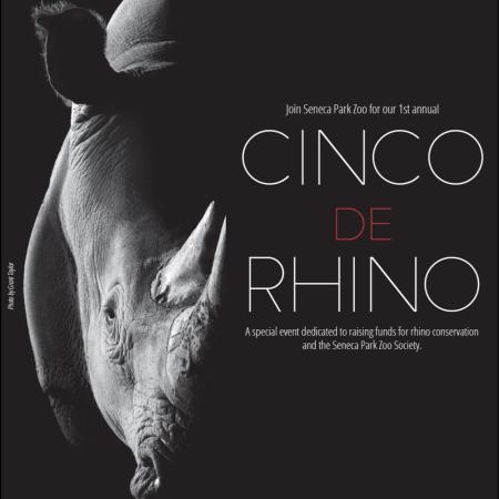 Cinco de Rhino Seneca Park Zoo