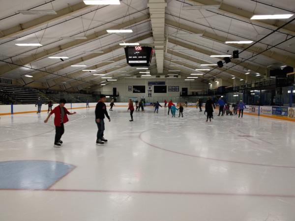 Ice Skating Hobbs