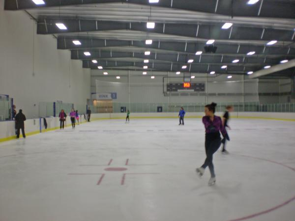 Parkview Icehouse - Figure Skating