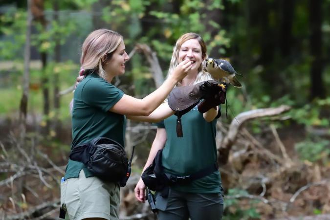Raptor Training Encounter CRC