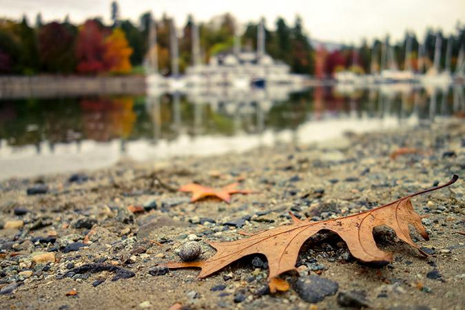 Autumn in Vancouver