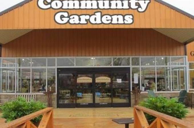Community Gardens Photo
