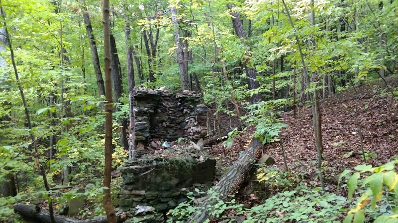 An old stone hearth lies crumbling in the Hemlock Forest, remnants of a long abandoned home.
