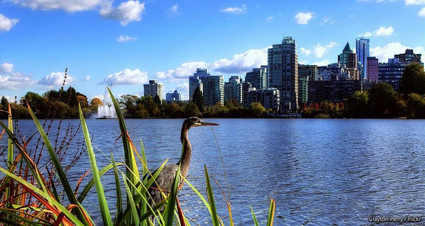 Stanley Park: Lost Lagoon