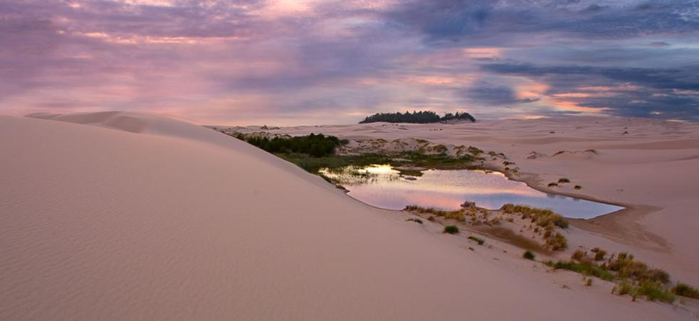 oregon beaches dunes tide pools eugene cascades oregon coast