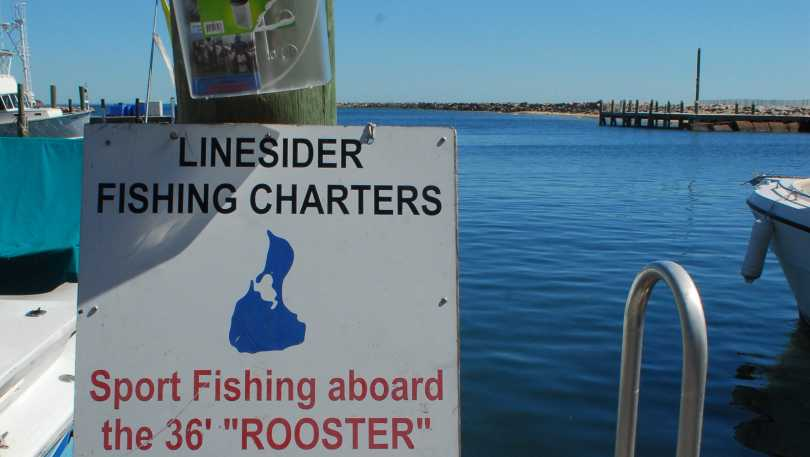 Linesider Fishing Charters