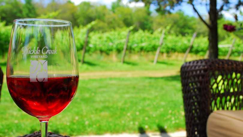 Nickel Creek Vineyard