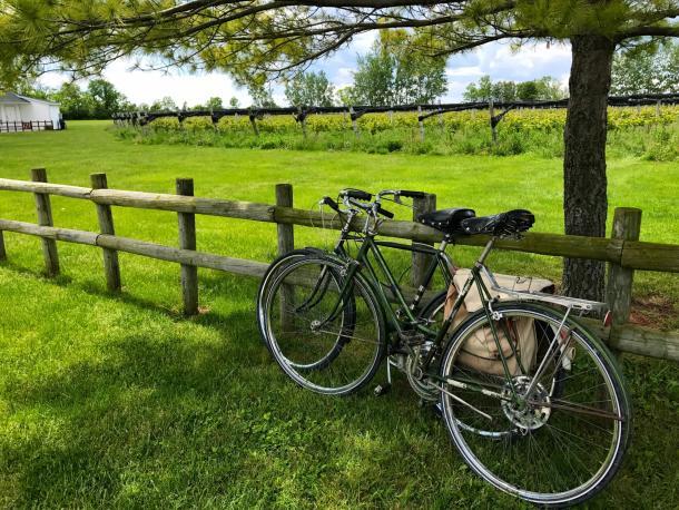 Pelee Island Winery Bike