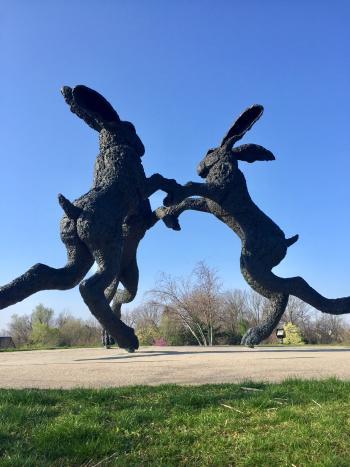 Dancing Bunnies 2