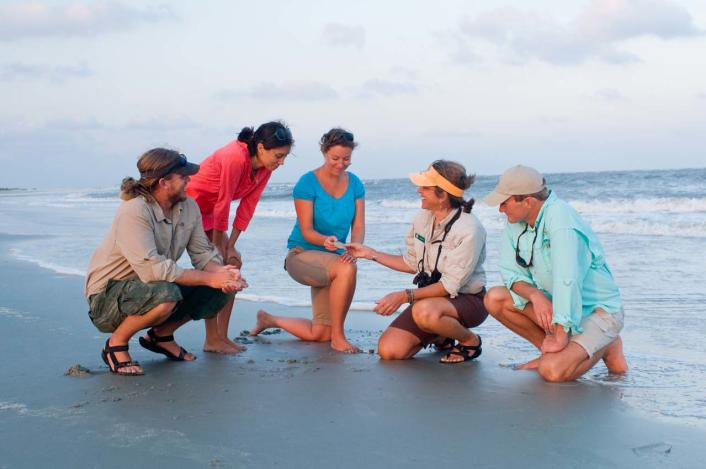 Sea Island beach tours