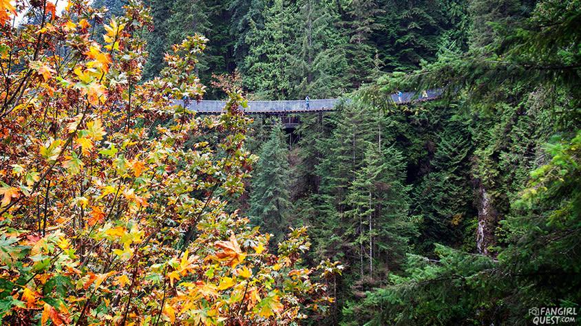 FanGirl Quest: The 100 Capilano Suspension Bridge Park