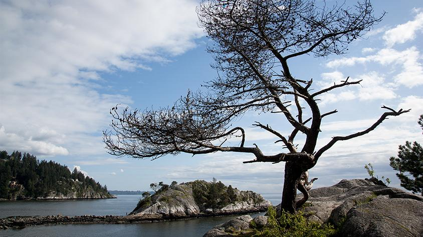 FanGirl Quest: The 100 Whytecliff Park