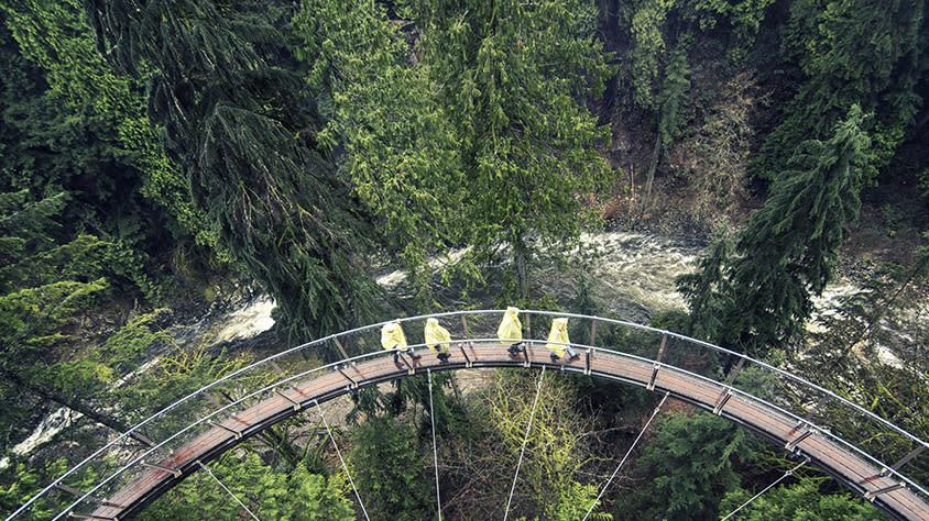 Capilano Suspension Bridge Park - Cliffwalk in the Rain