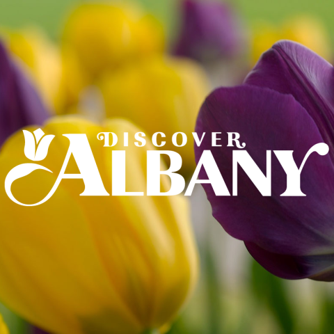 Albany Visitor Journey A2D