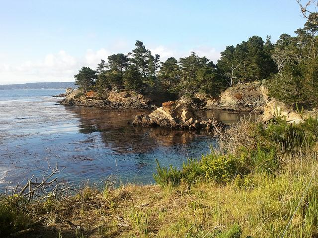 Point Lobos, Carmel