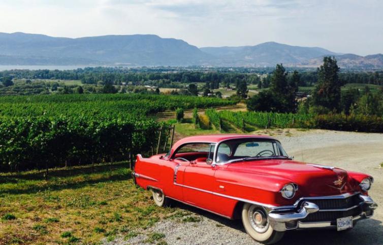 Vintage Wine Tours