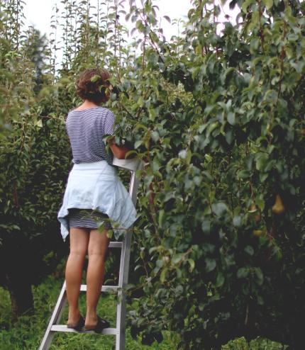 U-Picking in Kelowna