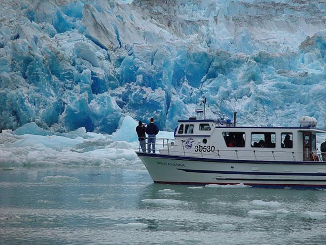Glacier Cruising