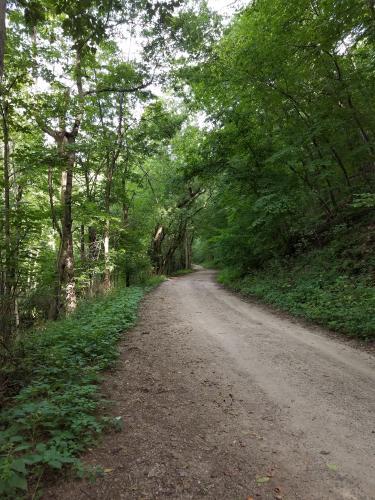 """Putnam Trail."