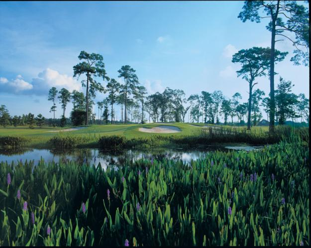 Gray Plantation Golf Course