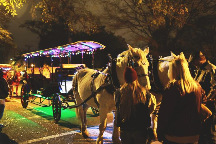 Christmas light holiday season tours in Columbia, SC
