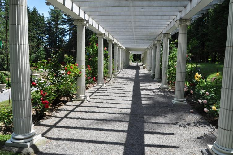 Full long view of the pergola at Yaddo Gardens with roses on both sides.