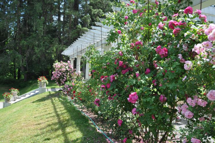 Pergola at Yaddo Gardens view of outer wall with roses.