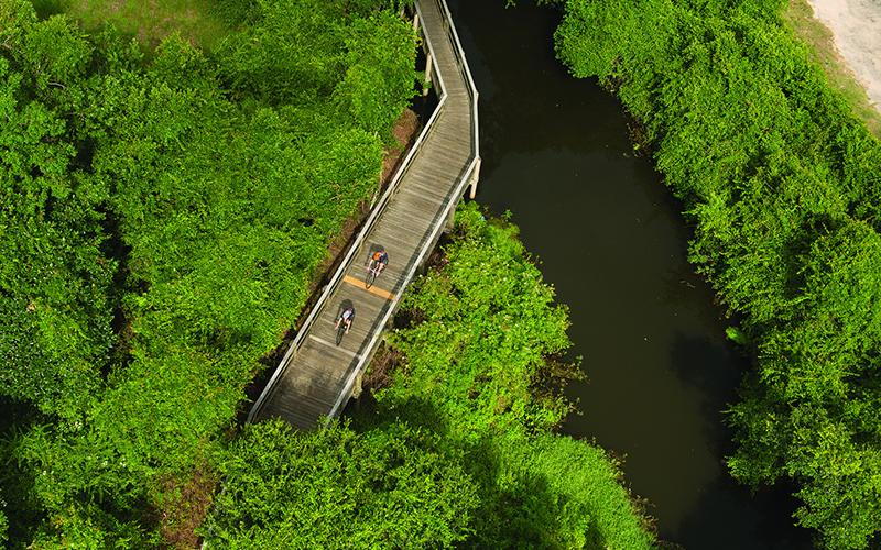 Overhead view of bikers in Jones Swamp Preserve