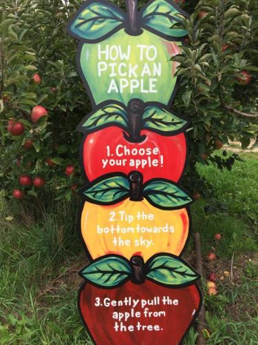 Moelker Orchards apple picking sign in Grand Rapids, Michigan