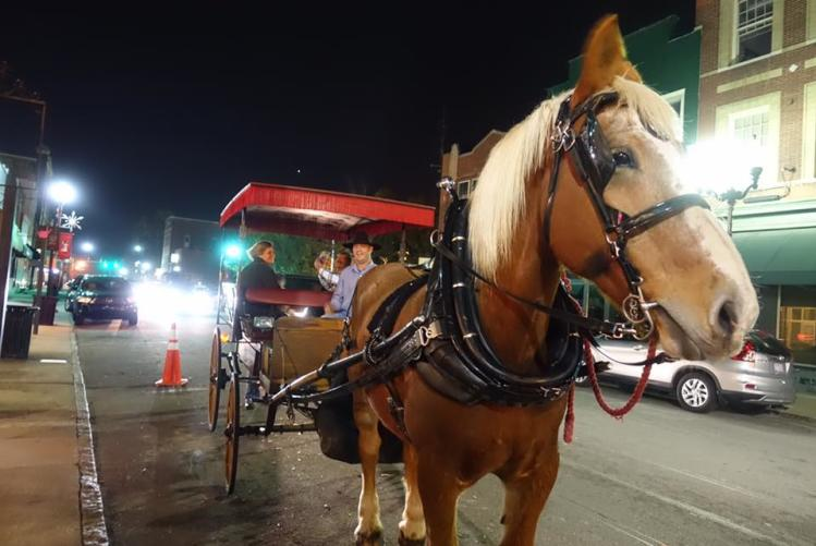 Free Carriage Rides in Smithfield