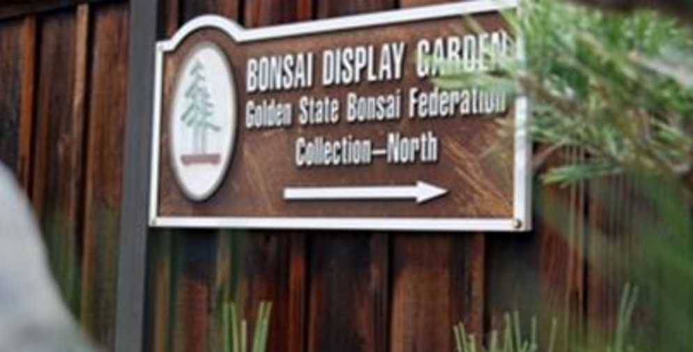 Bonsai Garden at Lake Merritt