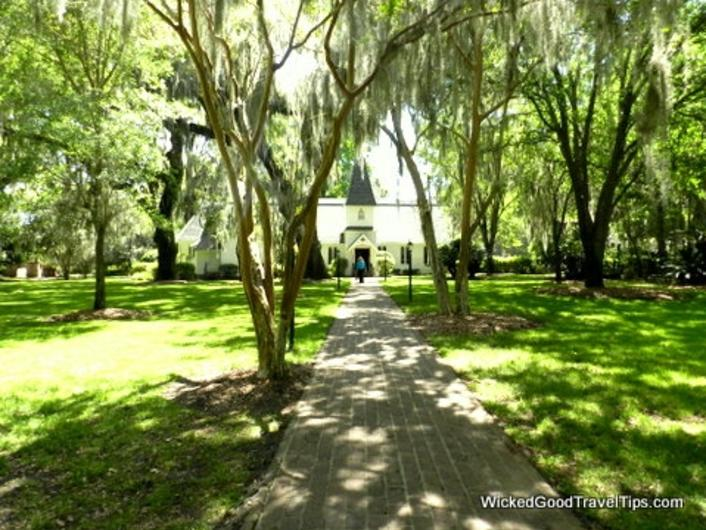 The magic of the St Simons Island Oaks