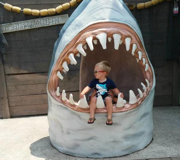 Two-year-old Reddik bravely poses between the teeth of a shark at the Fort Wayne Children's Zoo.