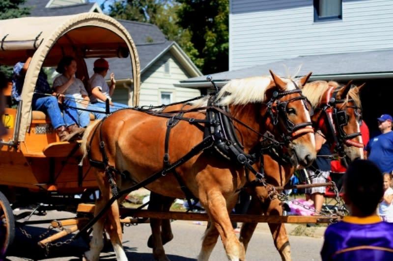 Monroe County Fall Festival