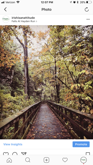 Fall Color Instagram