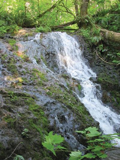 Mima Falls Craig Romano