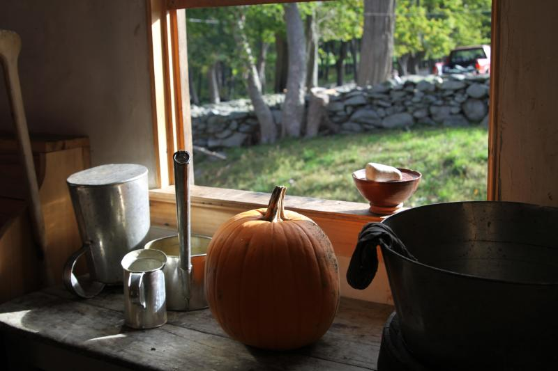 Coggeshall Farm Pumpkin