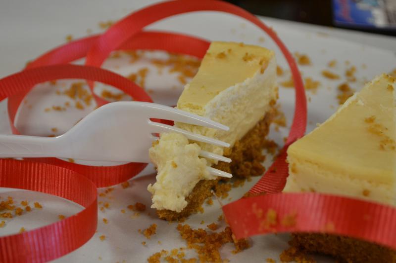 Vegan Cheesecake at Back to Edenz