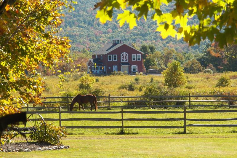mountain-horse-farm-naples-exterior-carriage-house-horses