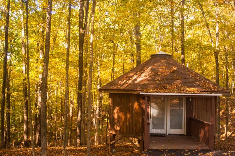 yurts in bloomington in