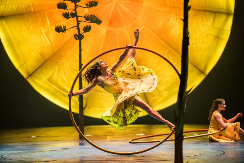 A dancer performs in Cirque du Soleil's Luzia