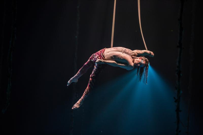 An acrobat performs in Luzia