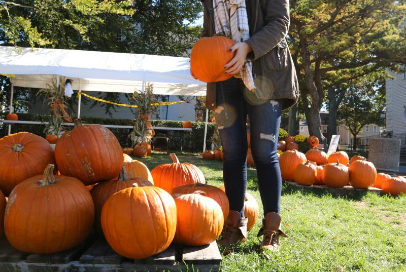 Fall in Newport