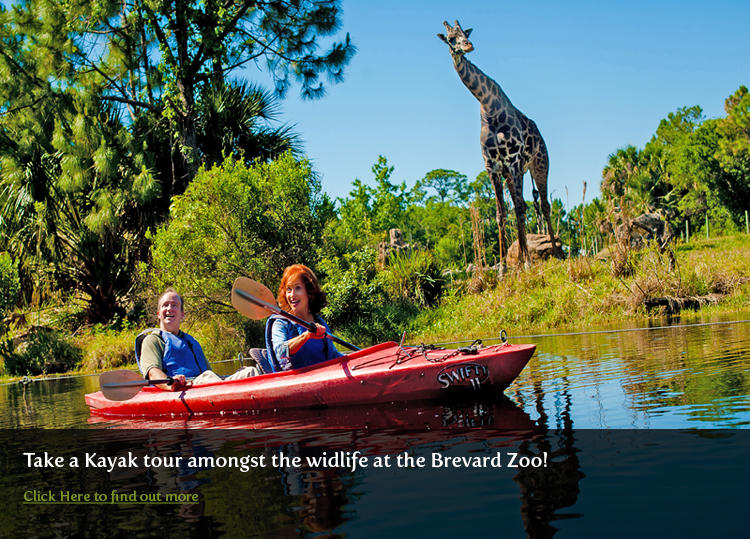 Kayak with the Wildlife at Brevard Zoo