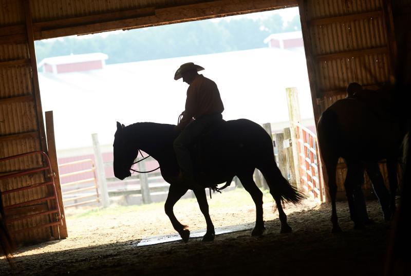 Michigan Horse Expo